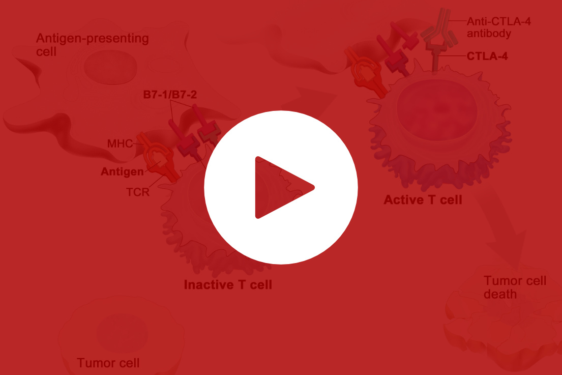 Video Screen Shot Tumor Immunology Checkpoint Inhibitors
